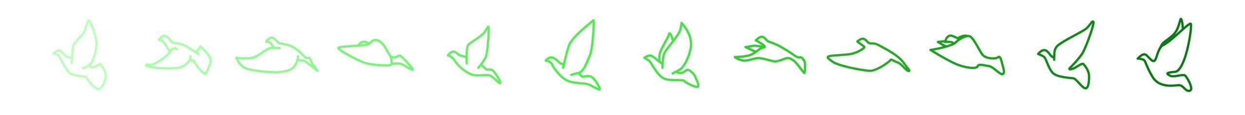 Pigeon Center Vliegende duif